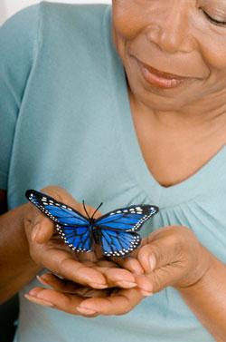 senior holding butterfly