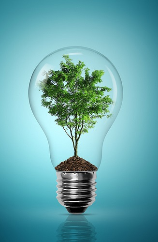 3 Tips for Ecologically Responsible Senior Living