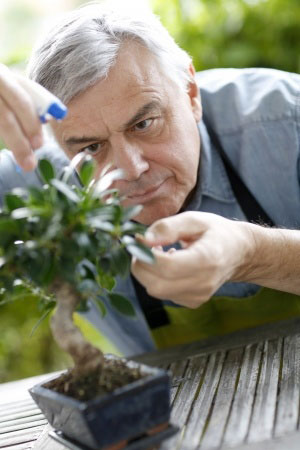 elderly-man-with-green-plant