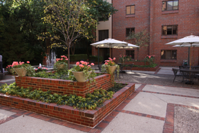 We'll be heading out to the patio for plenty of senior living activities this month