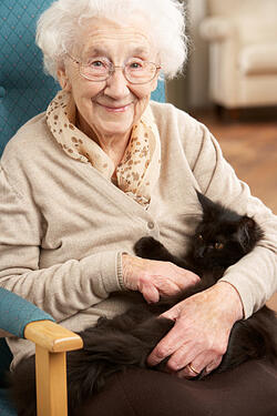 Senior woman holding a cat and sitting in a chair in her home