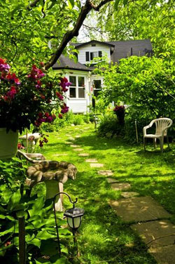 Are Backyard Cottages a Future Care Trend?