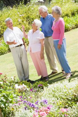 group-of-senior-friends-in-garden