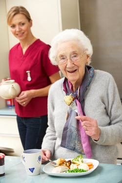 senior at home with geriatric care manager