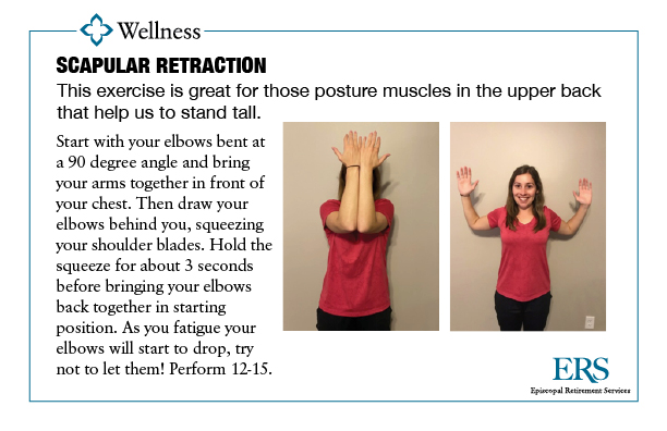 Home Exercise Series1_scapular