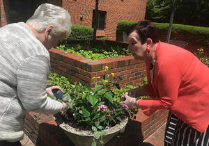 The Benefits of Horticultural Therapy