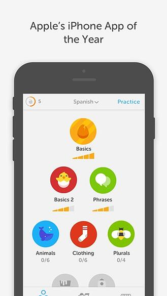 dulingo-app.jpeg