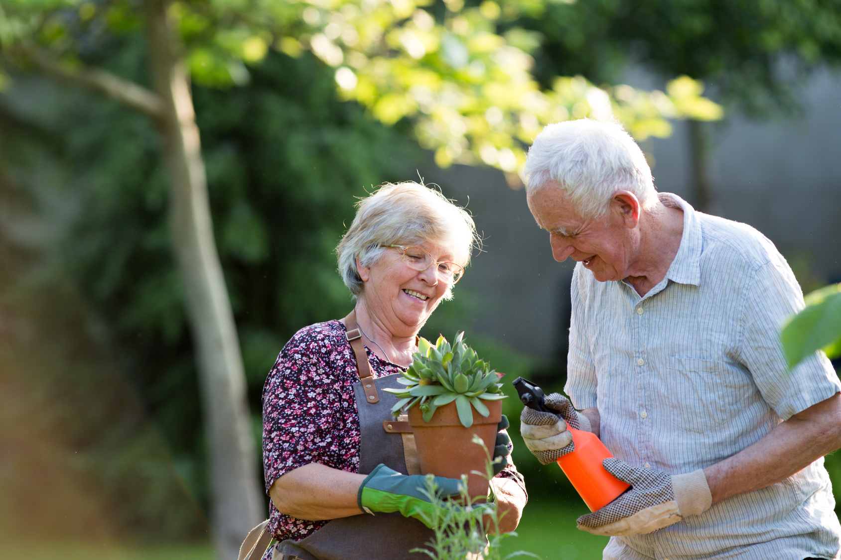 Why It's Important for Seniors to Stay Active This Summer