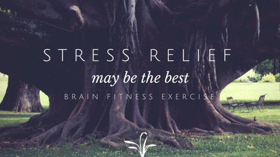 Stress Relief May Be the Best Brain Fitness Exercise